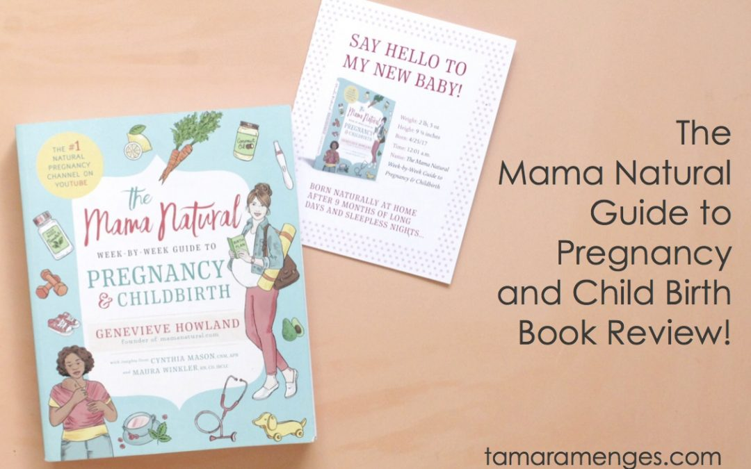Mama Natural's Guide to Pregnancy and Childbirth Book Review