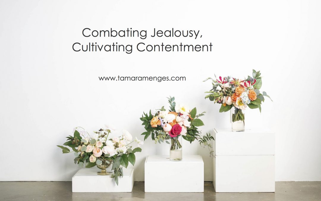 Combating Jealousy, Cultivating Contentment