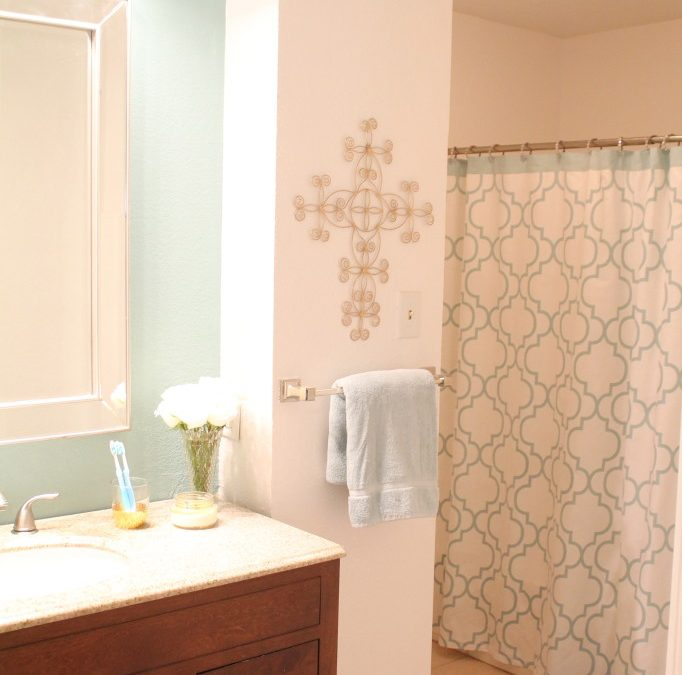 Introducing Design Thursday with a Quick Bathroom Update